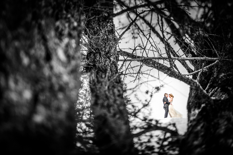 Bride and Groom Portrait: 5-th Place by Sean LeBlanc (Sean LeBlanc Photography)