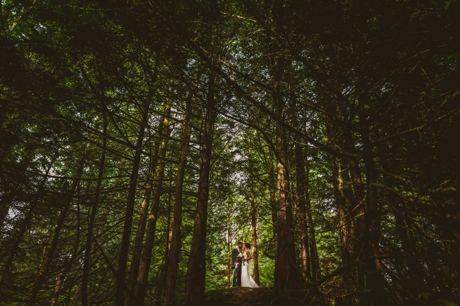 Bride and Groom Portrait: 5-th Place by Brad Coupland (Love Tree Photography (Brad Coupland))