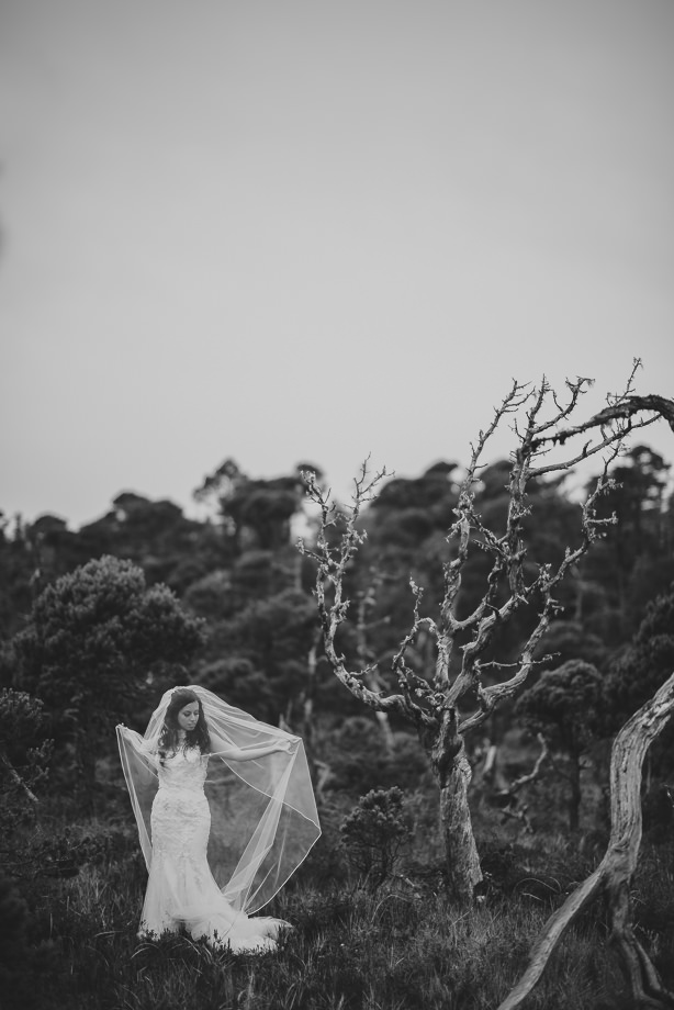 Bridal Portrait: 4-th Place by Erin Wallis (ERIN WALLIS PHOTOGRAPHY)