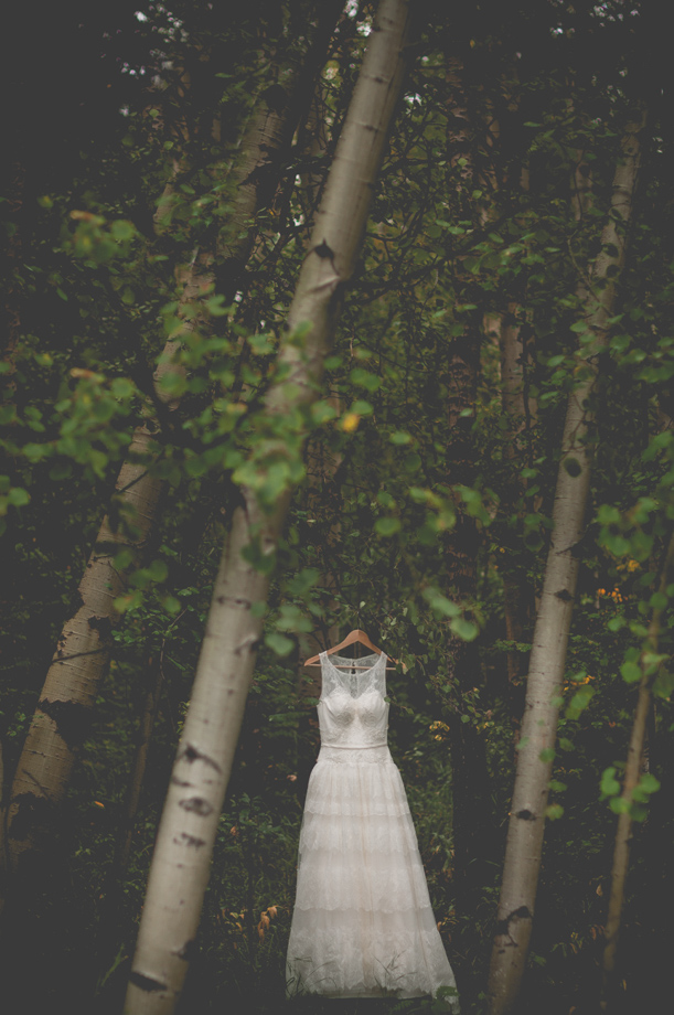 The Wedding Dress: 10-th Place by Shalene Hanson (Shalene Dawn Photography)