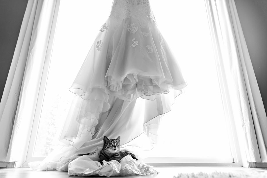The Wedding Dress: 6-th Place by Curtis Moore (Moore Photography)