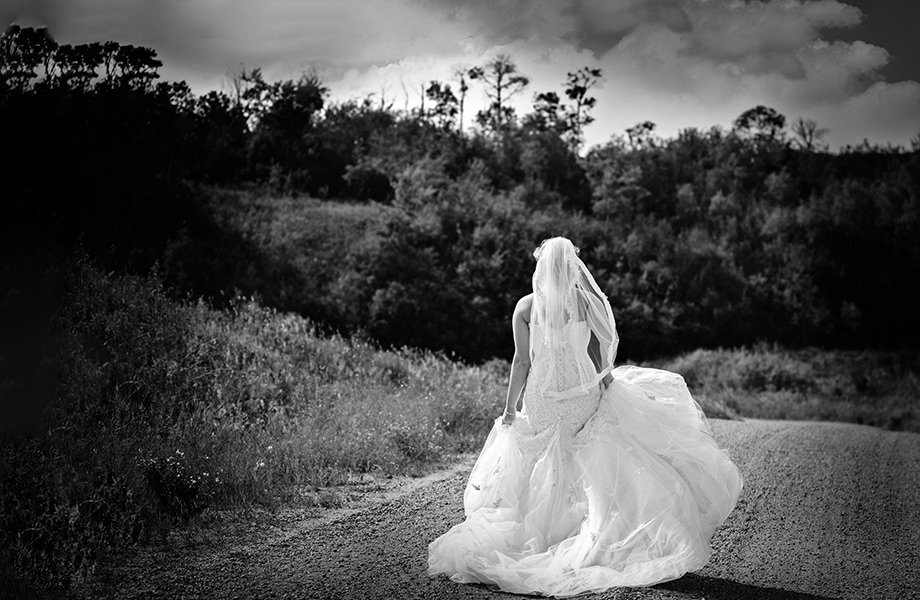 The Wedding Dress: 9-th Place by Carol Gillis (Carol's Photography)
