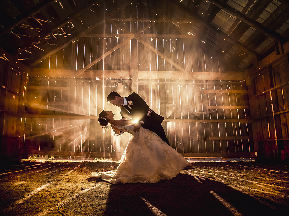 Bride and Groom Portrait: 1-st Place by Mitch Lenet (Mitch Lenet Photography)