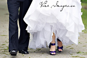 Click here to visit website of Vine Images Inc. Julie Johnson Photography