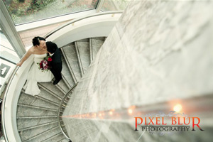 Click here to visit website of Pixel Blur Photography