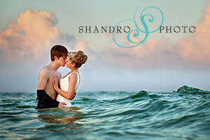 Click here to visit website of Shandro Photo (Michael Shandro)