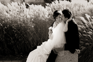 Click here to visit website of Cary Chan Photography