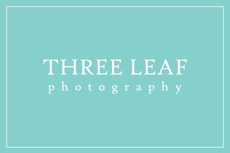 Click here to visit website of Three Leaf Photography