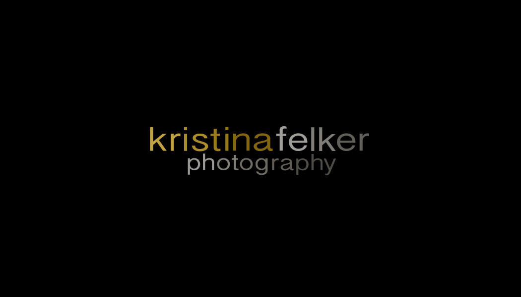 Click here to visit website of Kristina Felker Photography